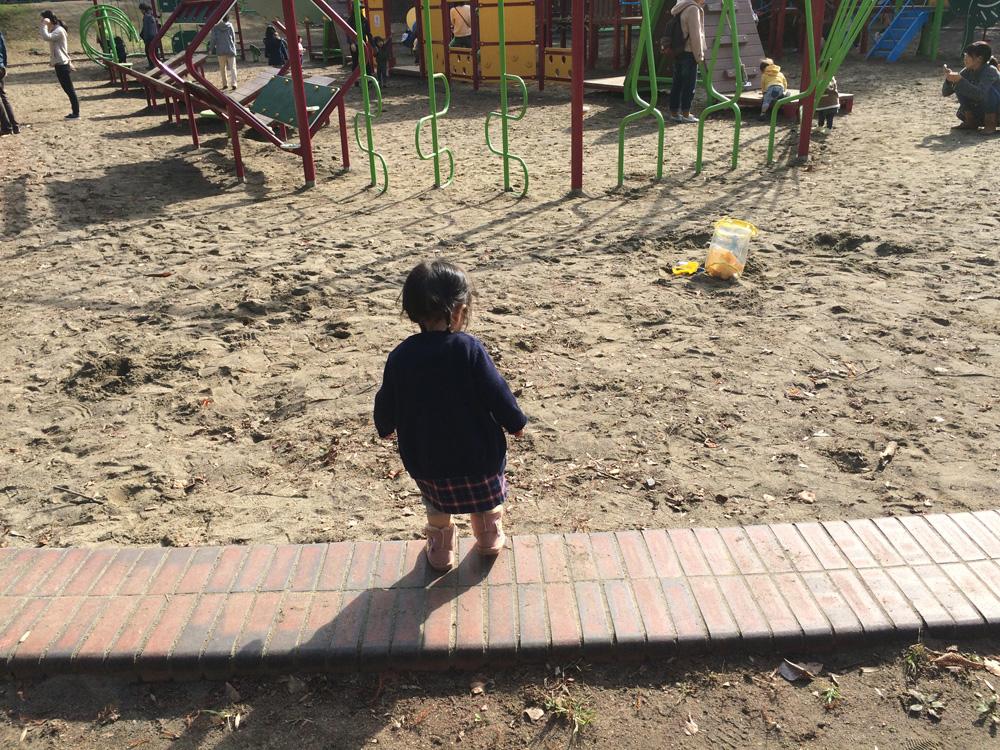 柏の葉公園 遊具