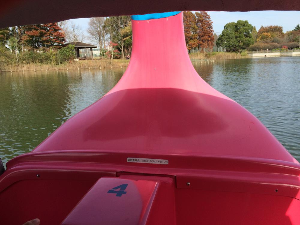 柏の葉公園 スワンボート