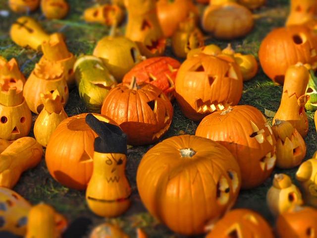 ハロウィン かぼちゃ たくさん