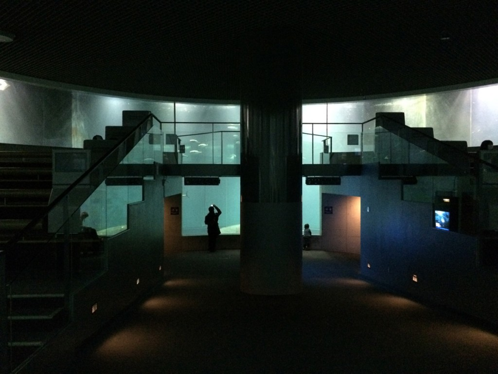 葛西臨海水族園 内部